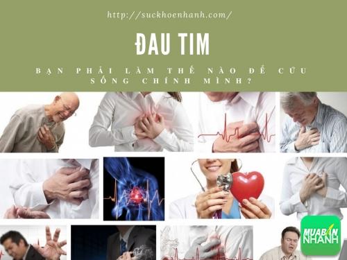 Làm thế nào để cứu sống bản thân khi lên cơn đau tim bất ngờ?, 442, Phương Thảo, Cẩm Nang Sức Khỏe, 23/03/2017 13:43:18