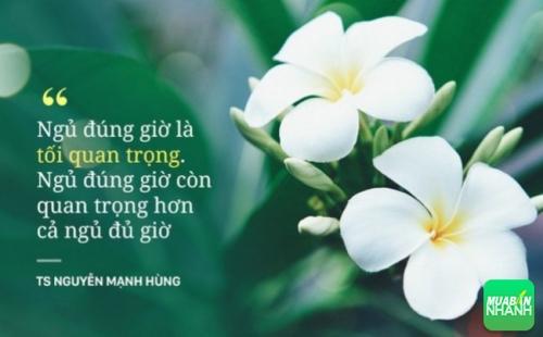 TS Nguyễn Mạnh Hùng nói về ngủ sai giờ - Con đường đến nghĩa địa nhanh nhất