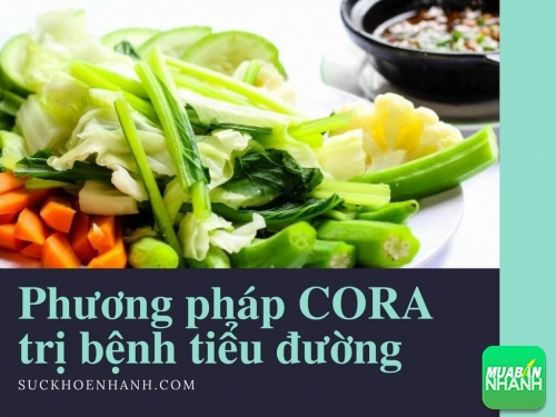 Phương pháp CORA trị bệnh tiểu đường: hiệu quả hơn cả mong đợi, 458, Tố Uyên, Cẩm Nang Sức Khỏe, 03/05/2017 09:43:33