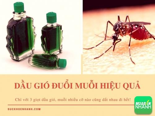 Mẹo đuổi muỗi hiệu quả với 3 giọt dầu gió, 470, Phương Thảo, Cẩm Nang Sức Khỏe, 15/05/2017 10:00:55