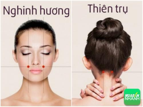 Điểm huyệt nghinh hương & thiên trụ để chữa đau đầu.