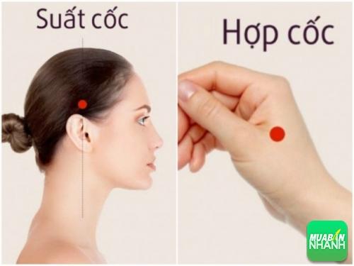 Điểm huyệt suất cốc & hợp cố để chữa đau đầu.