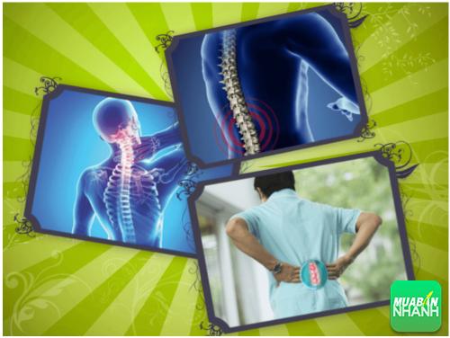 [ Bệnh văn phòng ] Bài bài tập giảm đau lưng cho dân văn phòng, 508, Minh Nhật, Cẩm Nang Sức Khỏe, 11/08/2017 13:50:22