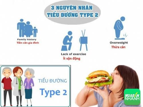Nguyên nhân tiểu đường tuýp 2 (type 2), 527, Phương Mai, Cẩm Nang Sức Khỏe, 23/08/2017 13:47:34