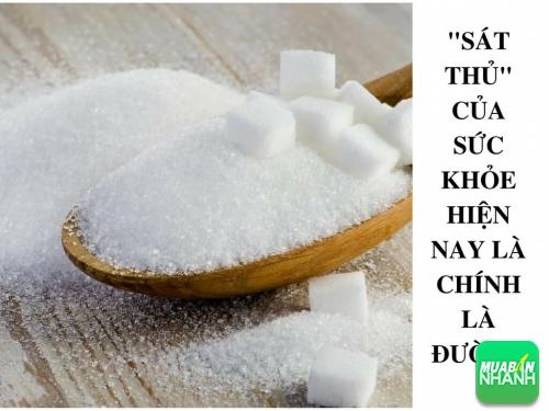 Thay vì hạn chế trứng, đường là thực phẩm bạn nên tránh xa, 538, Phương Thảo, Cẩm Nang Sức Khỏe, 11/10/2017 16:47:43
