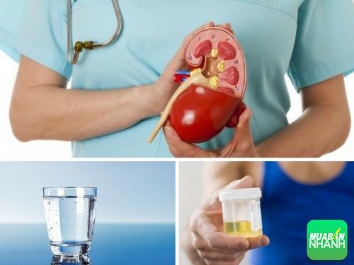 [Cảnh Báo Sức Khỏe] Kiểm tra bệnh thận hư chỉ mất 1 phút và 1 ly nước sạch, 542, Phương Thảo, Cẩm Nang Sức Khỏe, 25/11/2017 17:08:53