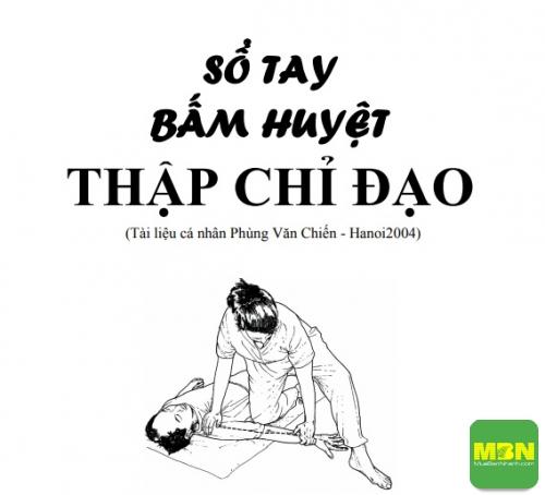 Download sách thập chỉ đạo PDF, 572, Ngọc Diệp, Cẩm Nang Sức Khỏe, 24/06/2021 08:49:27
