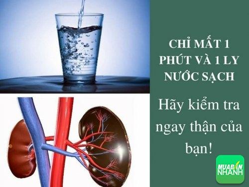 Chỉ mất 1 phút và 1 ly nước sạch: Hãy kiểm tra ngay thận của bạn có khoẻ hay không?, 467, Mai Tâm, Cẩm Nang Sức Khỏe, 06/05/2017 15:55:36