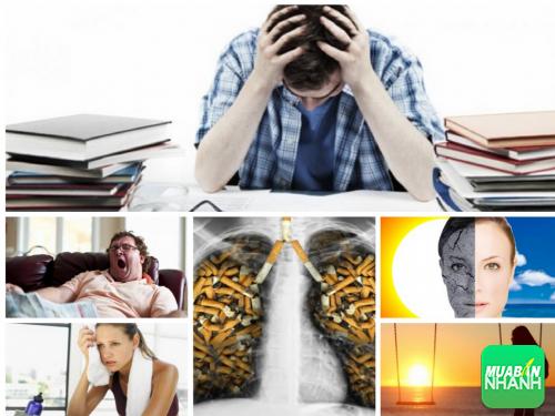 Chính bạn đang gây hại cho cơ thể của mình qua những thói quen xấu, 219, Phương Thảo, Cẩm Nang Sức Khỏe, 10/10/2016 10:04:54