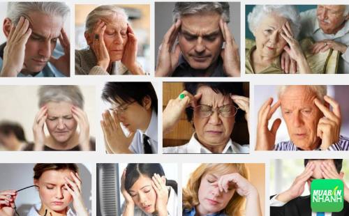 Chớ xem thường những dấu hiệu cảnh báo bệnh rối loạn tuần hoàn não, 246, Phương Thảo, Cẩm Nang Sức Khỏe, 15/10/2016 11:52:00