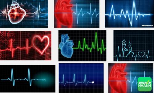 Những điều cần biết khi mắc phải bệnh rối loạn nhịp tim, 245, Phương Thảo, Cẩm Nang Sức Khỏe, 14/10/2016 11:34:46